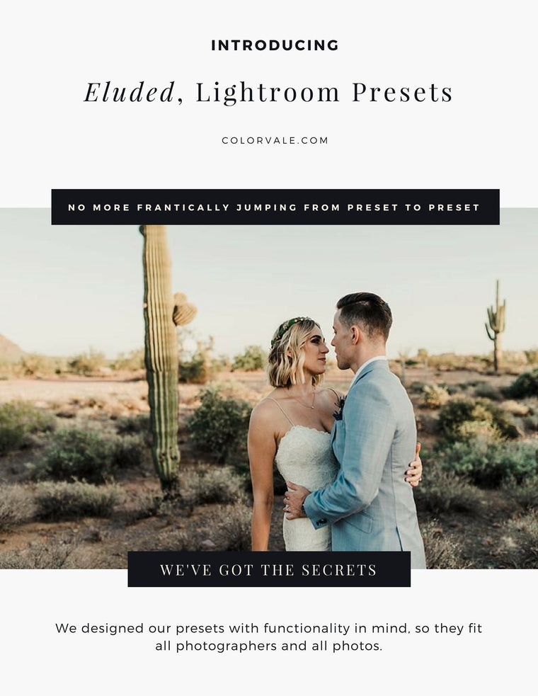 Eluded Lightroom Presets