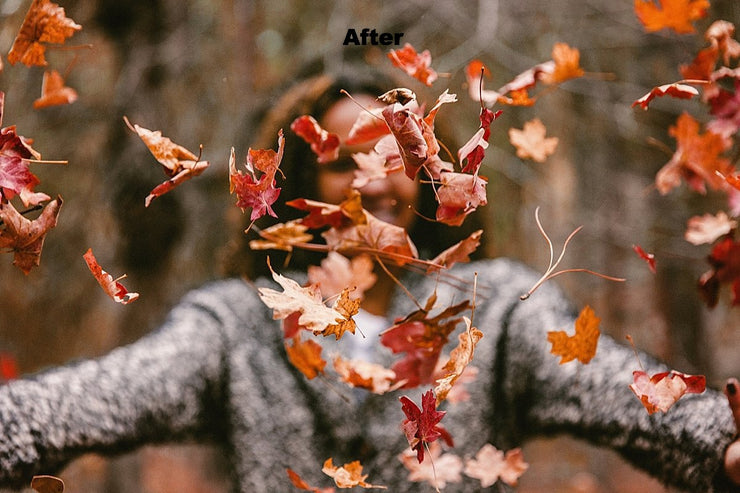 Fall Envy Photoshop Actions - for photographers - Photoshop Actions