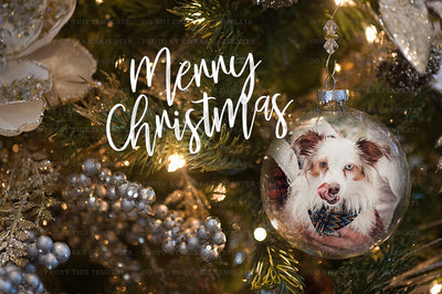 New ~ 2017 Ornament Template - for photographers - Templates & Overlays