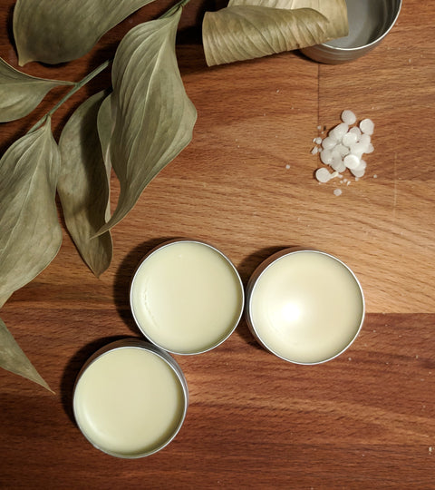 DIY Series: Preservative-Free Vegan Lip Balm