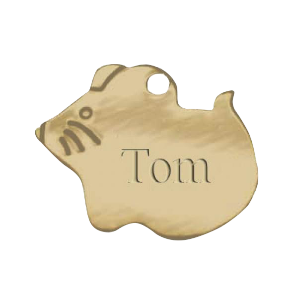 Brass Pet Tag Mouse