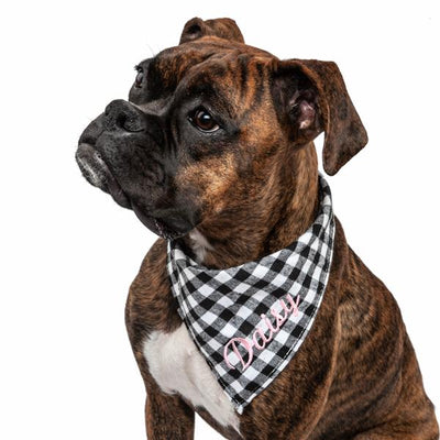 Small Dog Bandana - Gingham Plaid