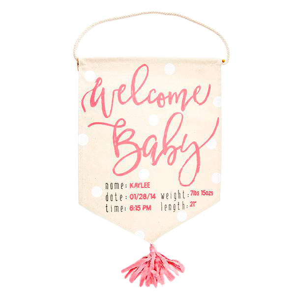 Welcome Baby Flag Pink