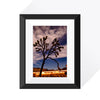 Joshua Tree Park Limited Edition Print (3 of 3 )