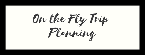 On the fly trip planning
