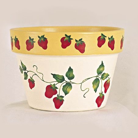 #197 Strawberry Pot