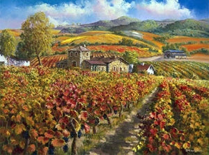 Red Vinyards Napa Valley By Sung Sam Park