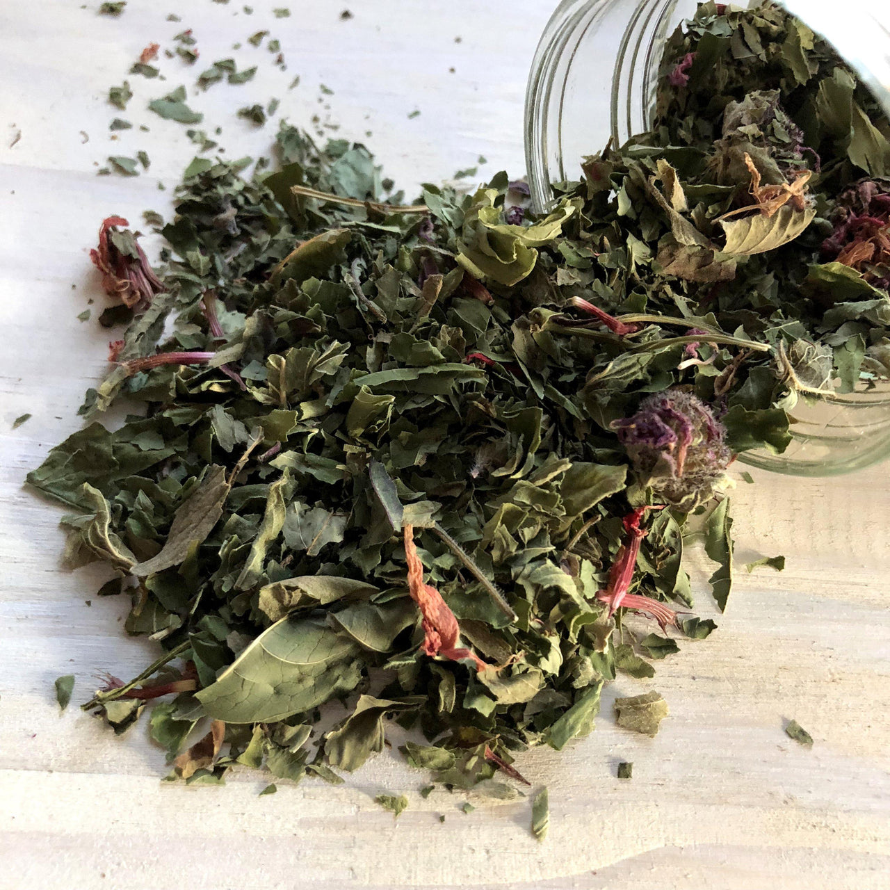 BEE BALM Dried Herbal Tea - Alywillow