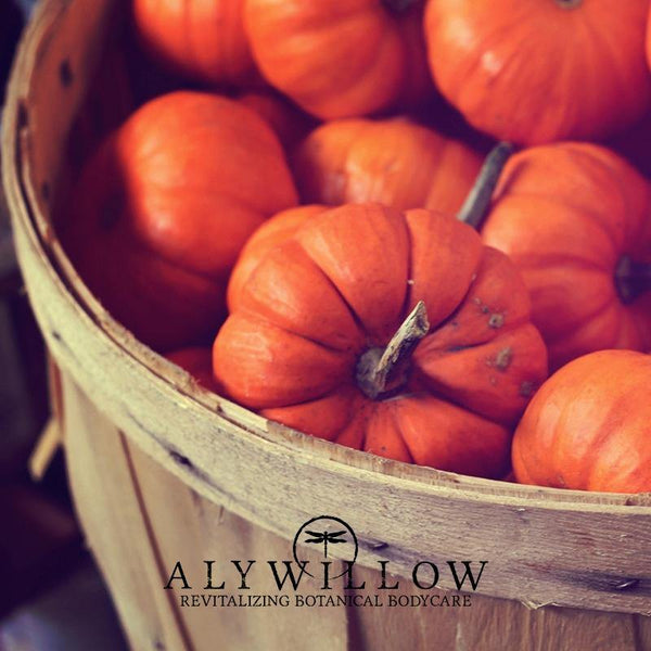 PUMPKINIGHT Vegan Bar Cleanser - seasonal item - limited time - Alywillow