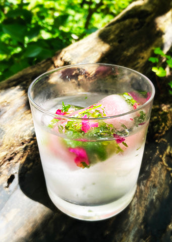 a frosty glass of water sitting on a log with colorful herbs ice cubes