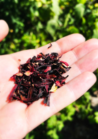 a hand holding dried hibiscus leaves