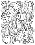 Seasons Coloring Sheet Pack