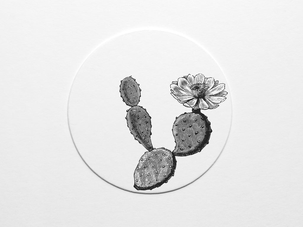 Texas Prickly Pear Coaster Set - onderkast-studio
