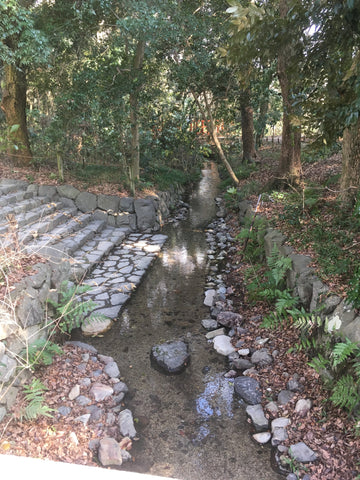 Stream at Shimogamo Shrine