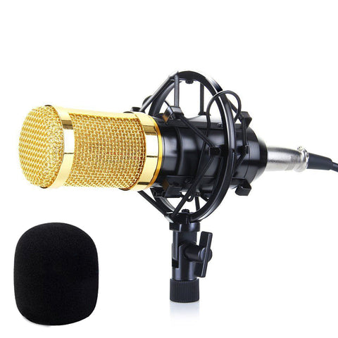 Condenser Microphone for Studio Recording & Broadcasting with Shock Mount