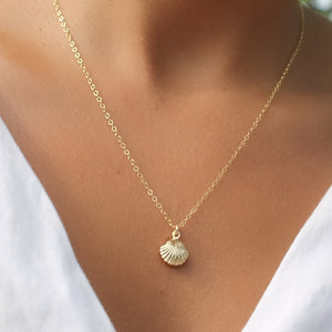 Gold Seashell Necklace • B289