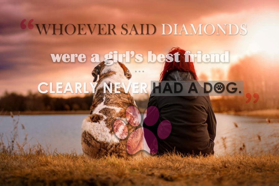 Girls And Dogs Canvas Prints Hd