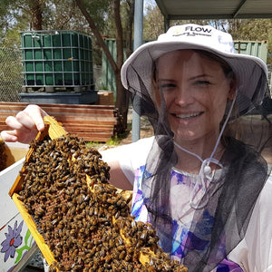 Bee Keeping Day Course - Perth only