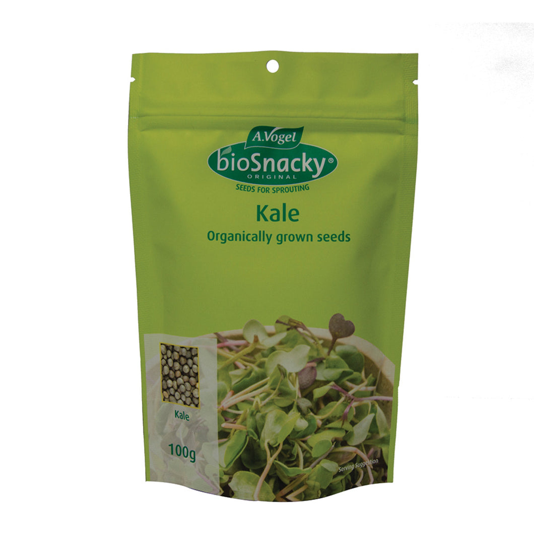 A. Vogel Biosnacky Organic Kale Seeds 100g