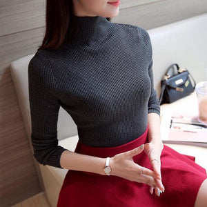 Knit Long Sleeve Turtleneck Sweater