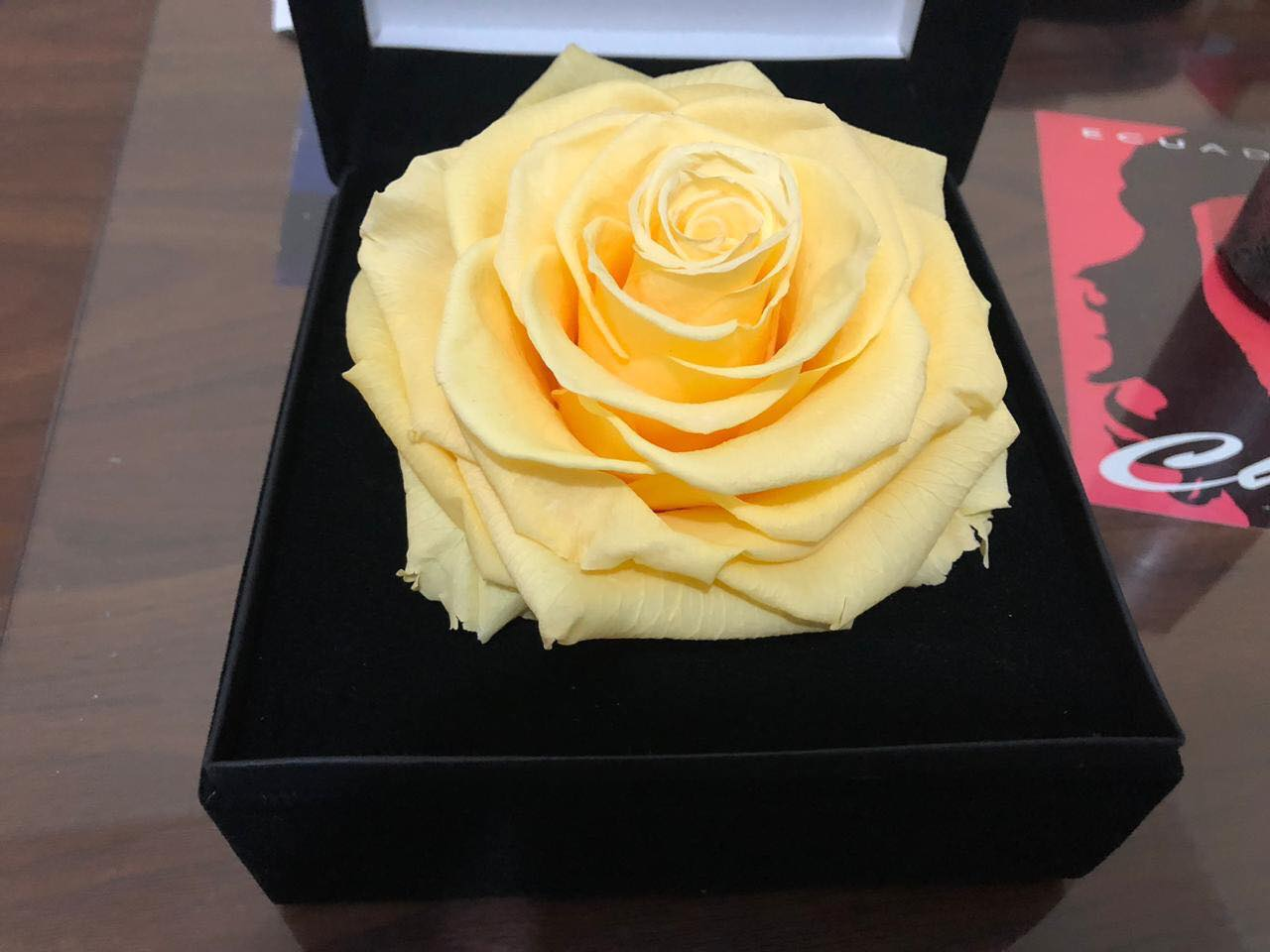 Jumbo Light Yellow Rose
