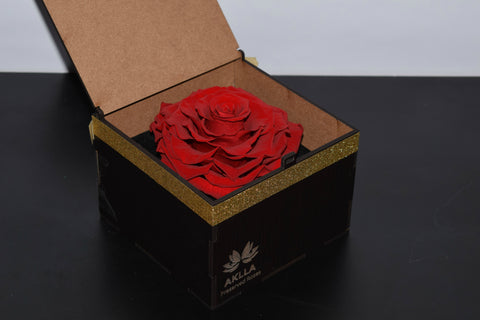 Jumbo Rose in a Black Box Display