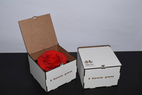 Jumbo Rose in a white box display