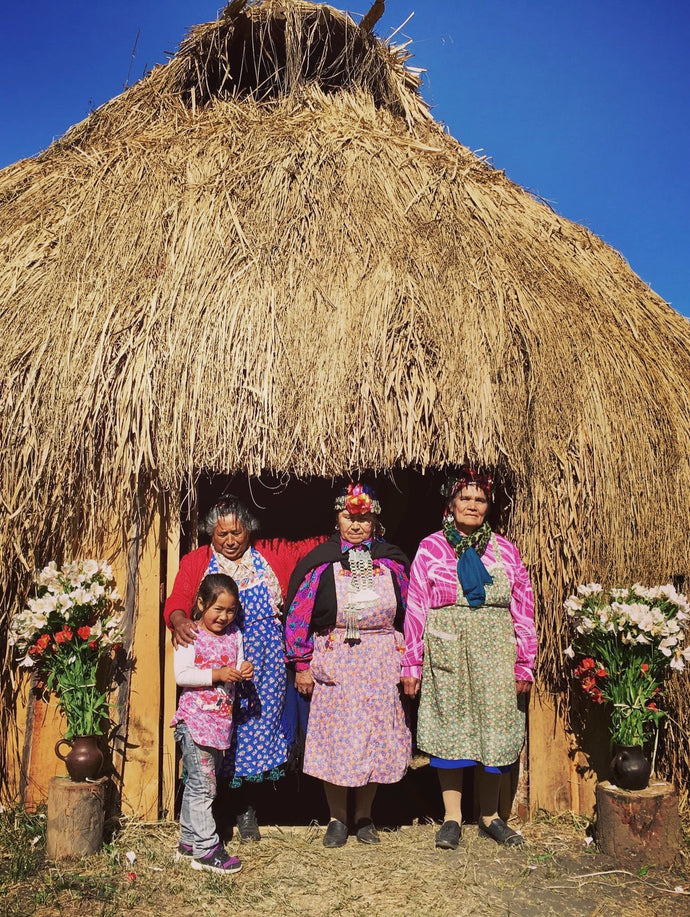The Mapuche Crafts