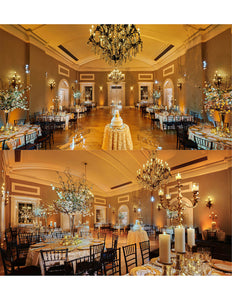 Event Planing: Wedding Platinum Package