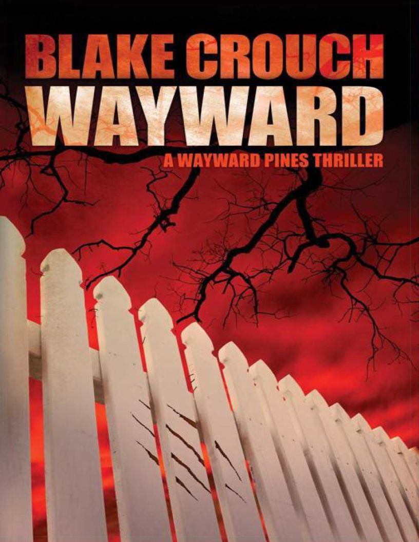 Wayward: (Wayward Pines) Book 2 - eBook, (Phone, Tablet, Computer) Fast Instant delivery
