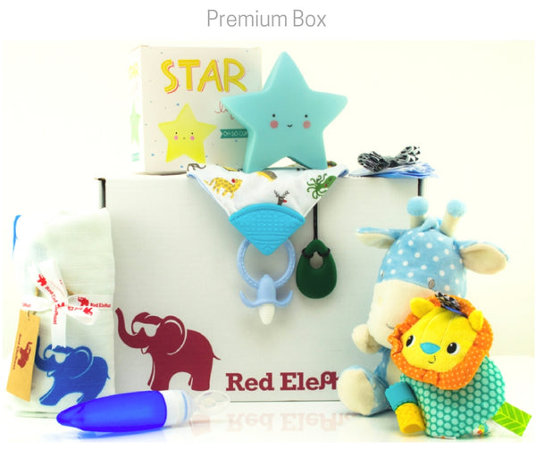 Subscription Baby Boxes