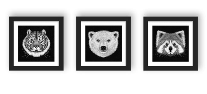 Wild Art - Black Triptych