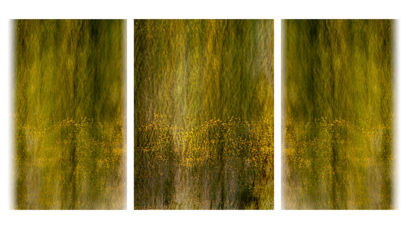 Ethereal Triptych