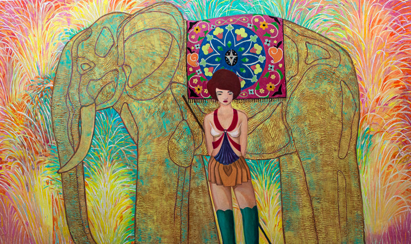 OBSERVATION OF FIREWORKS AND ELEPHANT