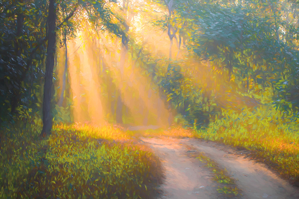 Enlightened pathway - ArtBuRt
