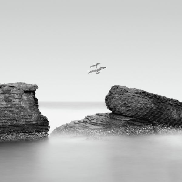RUINS, SILENT WAVES AND GULLS