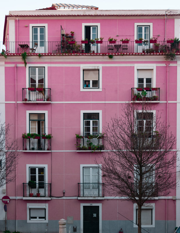 Old Lady In the Pink House