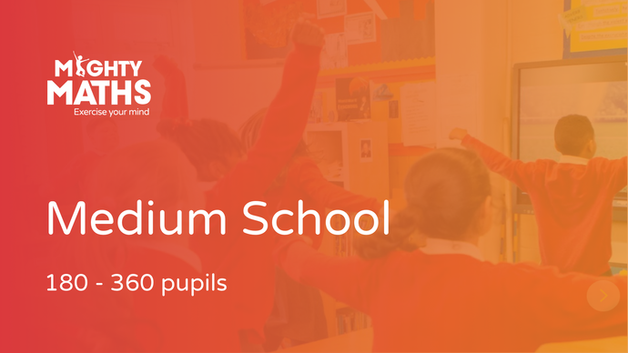 Mighty Maths: medium school (180-360 pupils)
