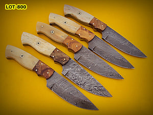 LOT-800,  Custom Handmade Damascus Steel Skinner Knife Set (Lot of Five) - Solid Natural Bone & Olive Wood Handle with Muzik Pin
