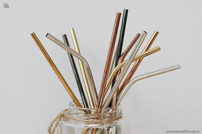 The Craft House  - Small Stainless Steel Straw