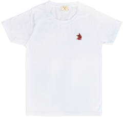 SMALLER THAN A FLY - ÁO T - SHIRT BẸC - GIÊ