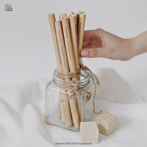 The Craft House - Set 10 Bamboo straw