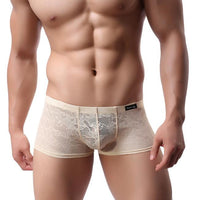 Men Underwear Lace Sexy Translucent Boxer Briefs Breathable Underpants BGL