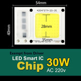 COB LED Chip 50W 220V 30W 20W 10W 3W Smart IC No Need Driver LED Bulb Lamp For DIY Floodlight Spotlight