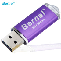 Bernal USB Flash Drive 256GB 16gb 32gb 64gb flash memory Metal Pendrive High Speed USB 2.0 Flash Drive with Key Ring Stick