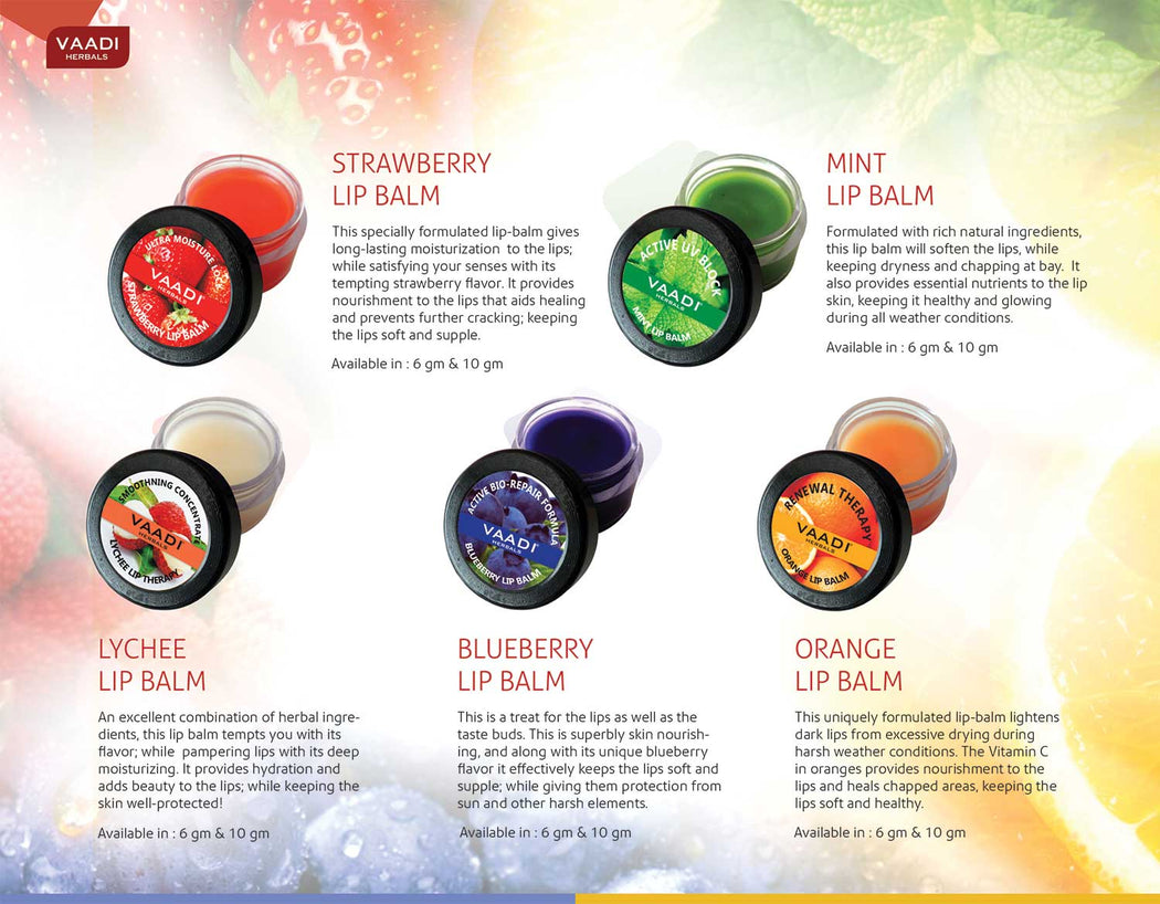Assorted Pack of 5 Lip Balms (10 gms x 5)