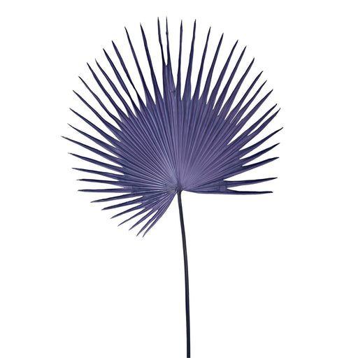 FAN PALM LEAF <br> DARK BLUE