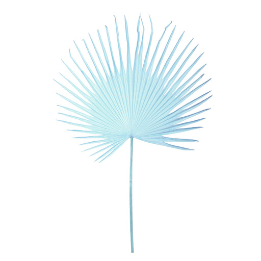 FAN PALM LEAF <br> LIGHT BLUE