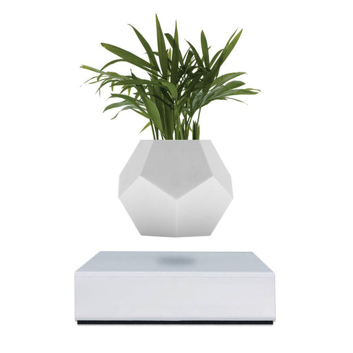 Lyfe Planter <br> White Base