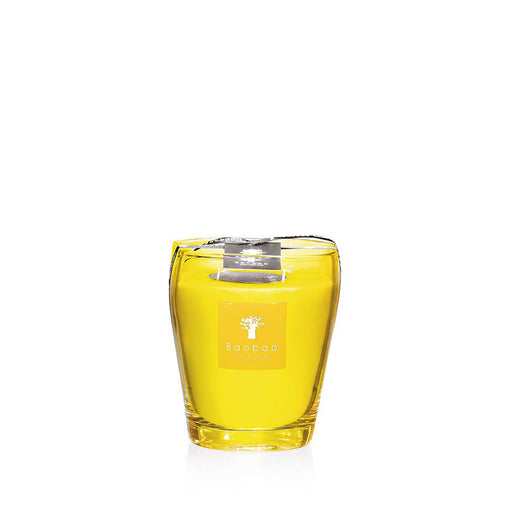 BEACH CLUB SOUTH BEACH CANDLE <br> LEMON, CITRON, GALBANUM <br> LIMITED EDITION <br> (14.5 x 16) CM